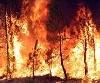 20071207144247-37195-incendios-x.jpg