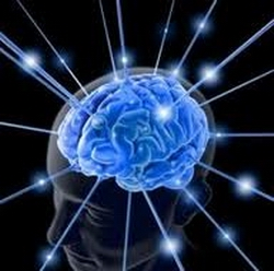 20120816161258-cerebro-humano-2-sep.jpg