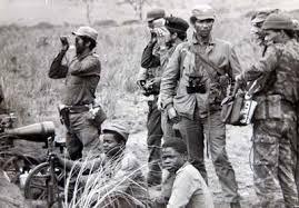 20131211150947-combatientes-cubanos-angolano.jpg