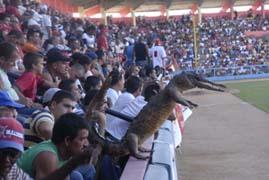 20140411222633-estadio-victoria-de-giron-matanzas-ene-2012.jpg